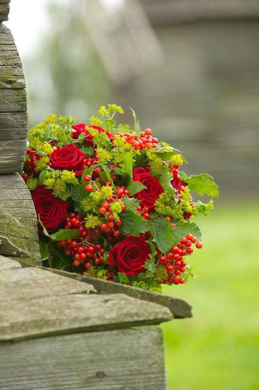 Каких цветов бывают каланхоэ